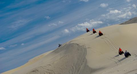沙丘探险之旅 (Sand Dune Adventures)