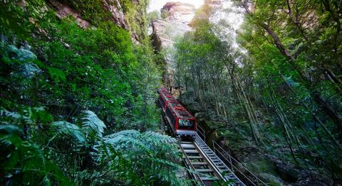 蓝山风景世界 (Scenic World Blue Mountains)