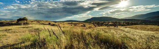 科休斯科国家公园 (Kosciuszko National Park)