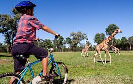 达博塔龙加西部平原动物园 (Taronga Western Plains Zoo)